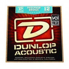 Dunlop DAP1254 Phosphor Bronze Light 12-54