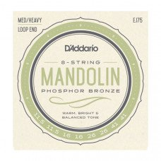 D`Addario EJ75 Mandolin Phosphor Bronze Medium/Heavy 11.5-41