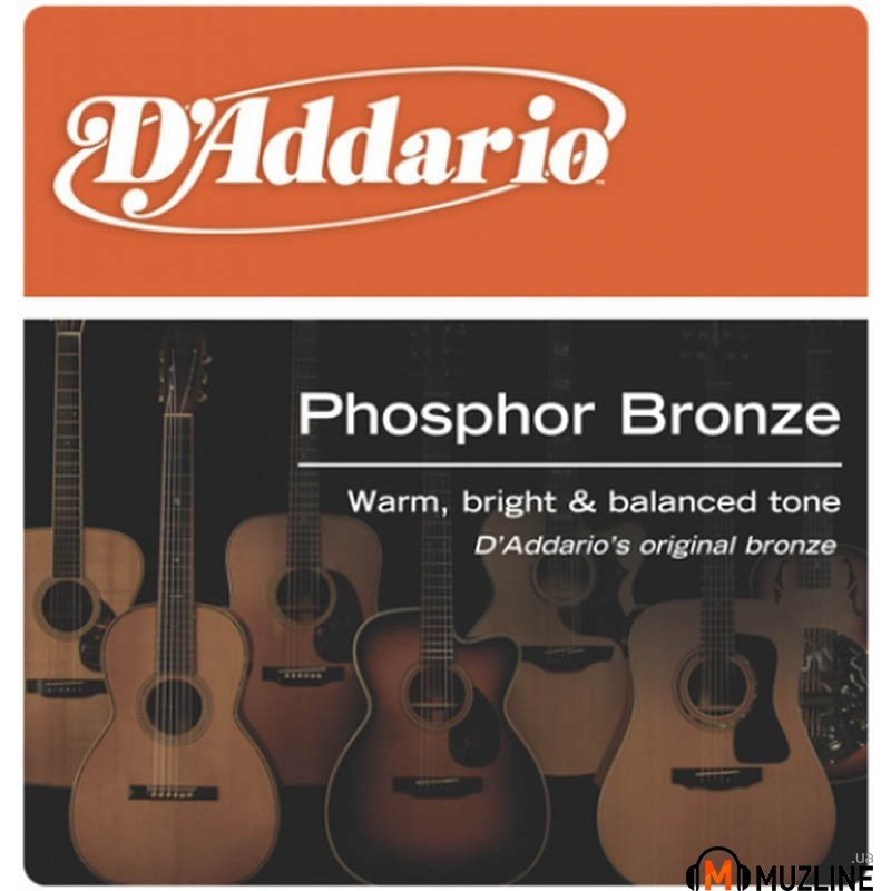 D'Addario EJ41 Phosphor Bronze 12-String X-Light 09-45