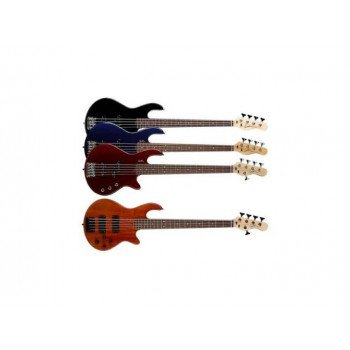 Бас-гитара Godin Freeway 5 Bass Natural Flame SG with Bag
