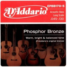 D'Addario EPBB170-5 Acoustic Bass Phosphor Bronze 5 String