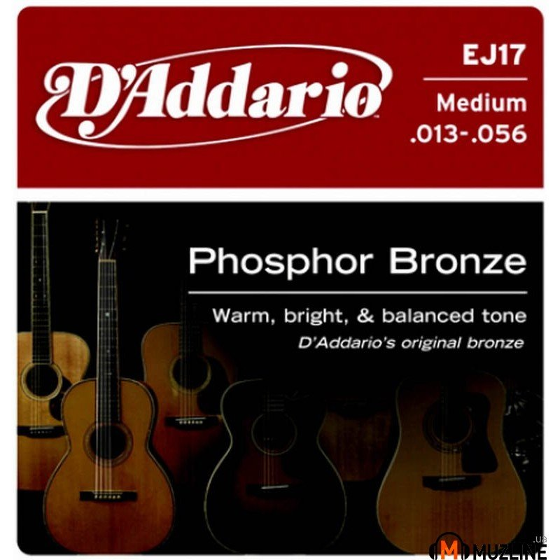 D'Addario EJ17 Phosphor Bronze Medium 13-56
