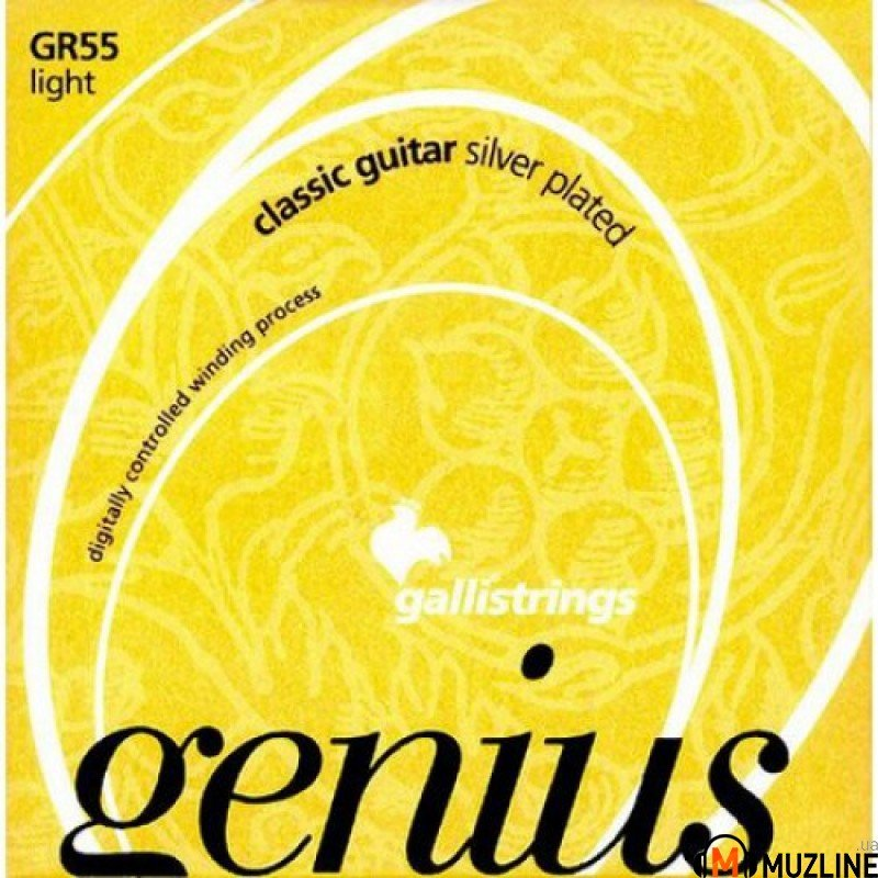 Galli Genius PROcoated GR55 C (22-48) Light Tension